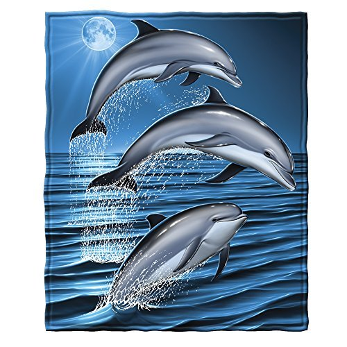 Dolphin Blanket: Gifts for dolphin lovers